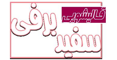 قالیشویی سفید برفی تهران